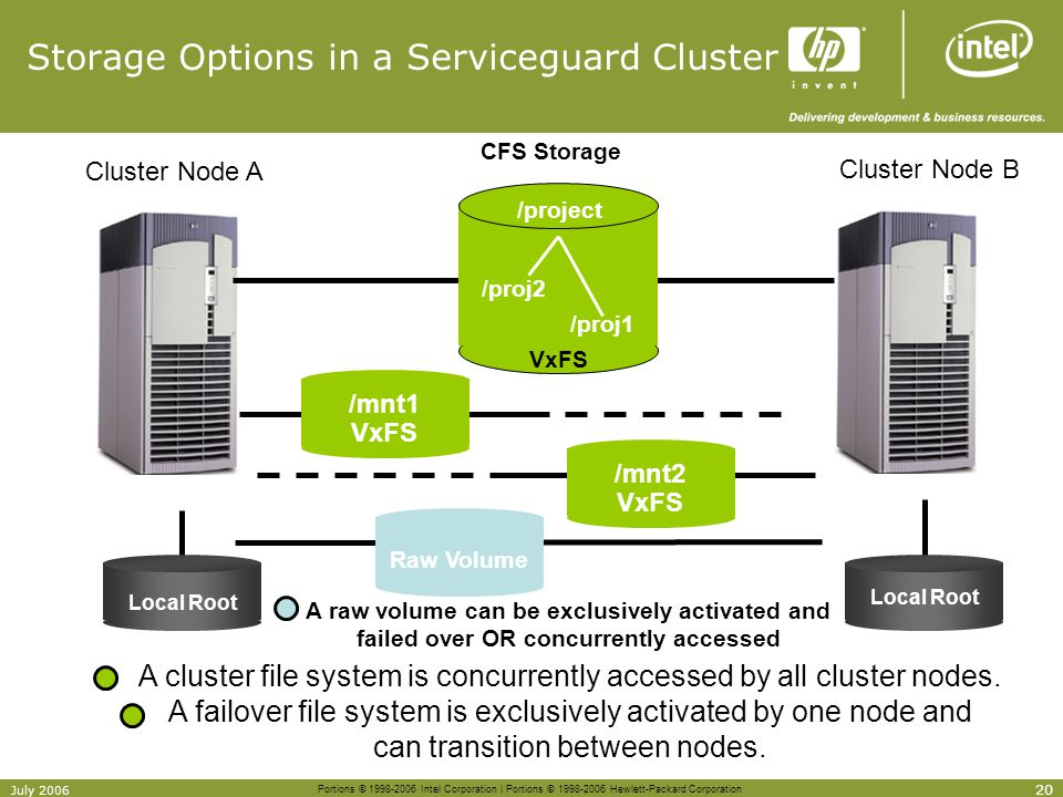 Storage Options in a Serviceguard Cluster