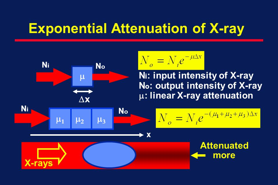 Exponential Attenuation of X-ray