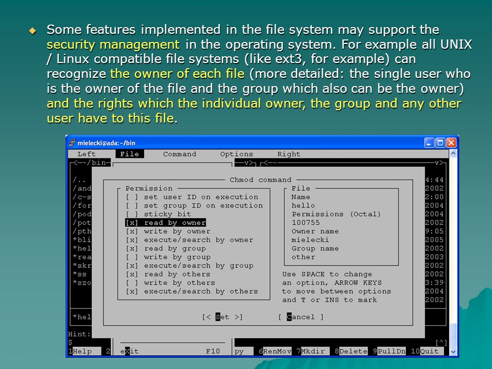 Some features implemented in the file system may support the security management in the operating system.
