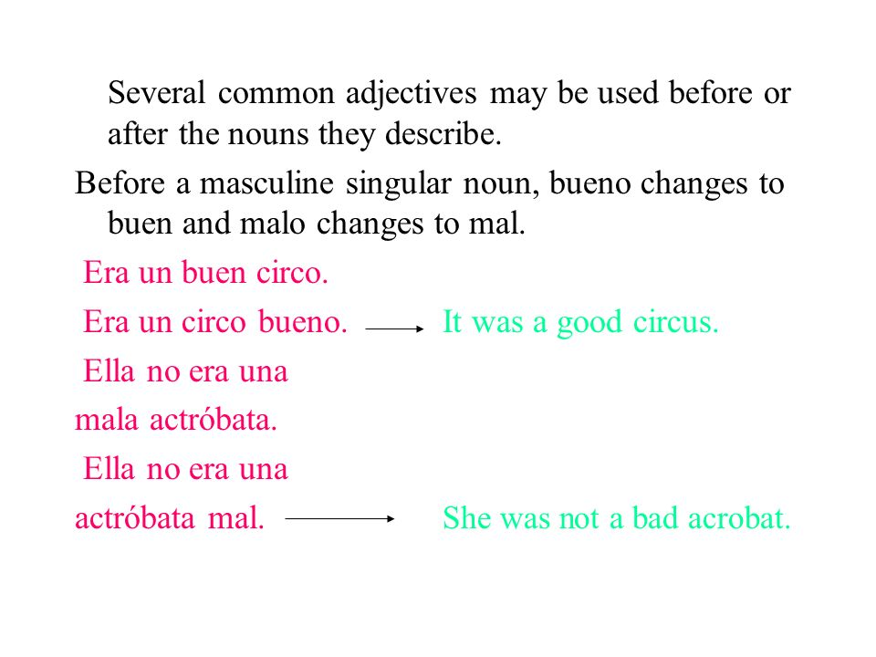 Several common adjectives may be used before or after the nouns they describe.