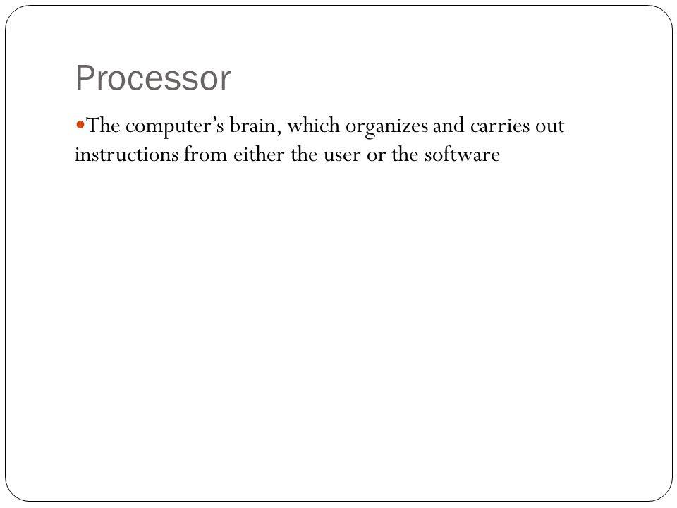 Processor The computer's brain, which organizes and carries out instructions from either the user or the software.