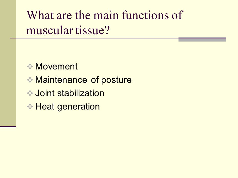 What are the main functions of muscular tissue