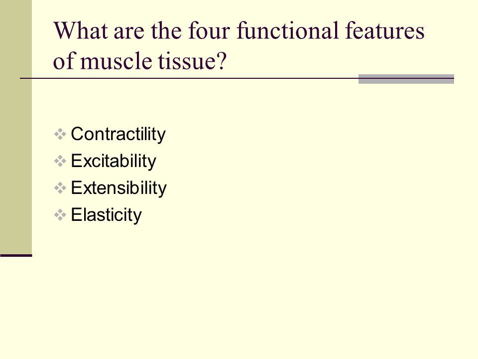 What are the four functional features of muscle tissue