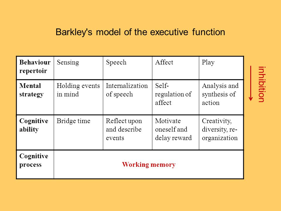 Barkley s model of the executive function