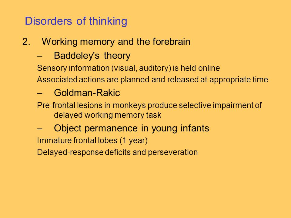 Disorders of thinking Working memory and the forebrain