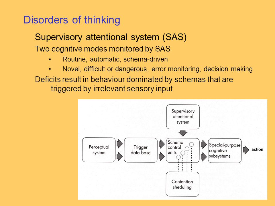 Disorders of thinking Supervisory attentional system (SAS)