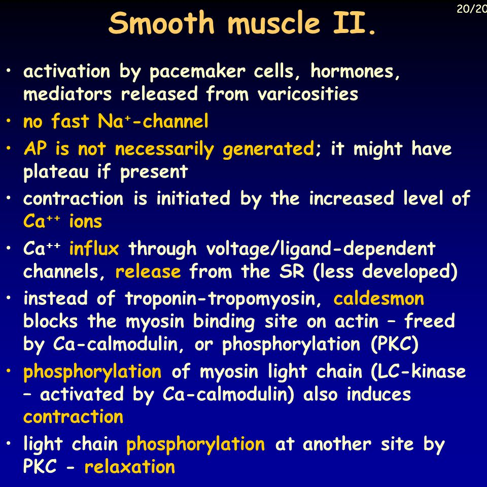 Smooth muscle II. 20/20. activation by pacemaker cells, hormones, mediators released from varicosities.