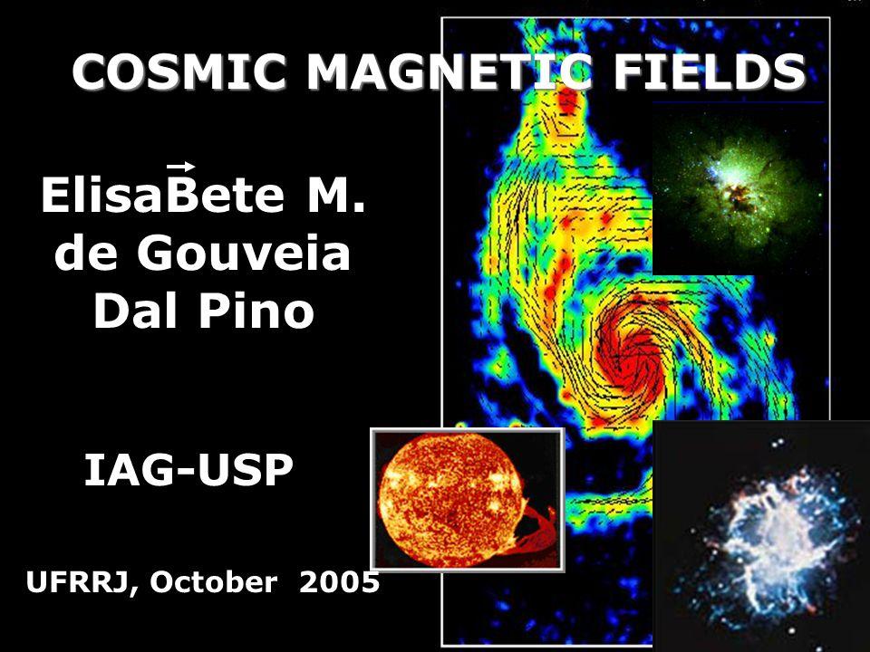 COSMIC MAGNETIC FIELDS ElisaBete M. de Gouveia Dal Pino