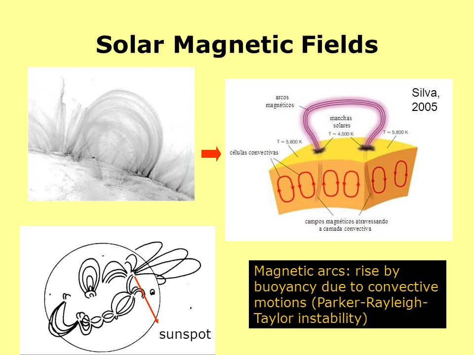 Solar Magnetic Fields Silva, 2005. Magnetic fields are created by dynamo action in the convection zone, and rise up to the surface by magnetic.