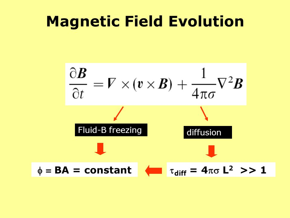 Magnetic Field Evolution