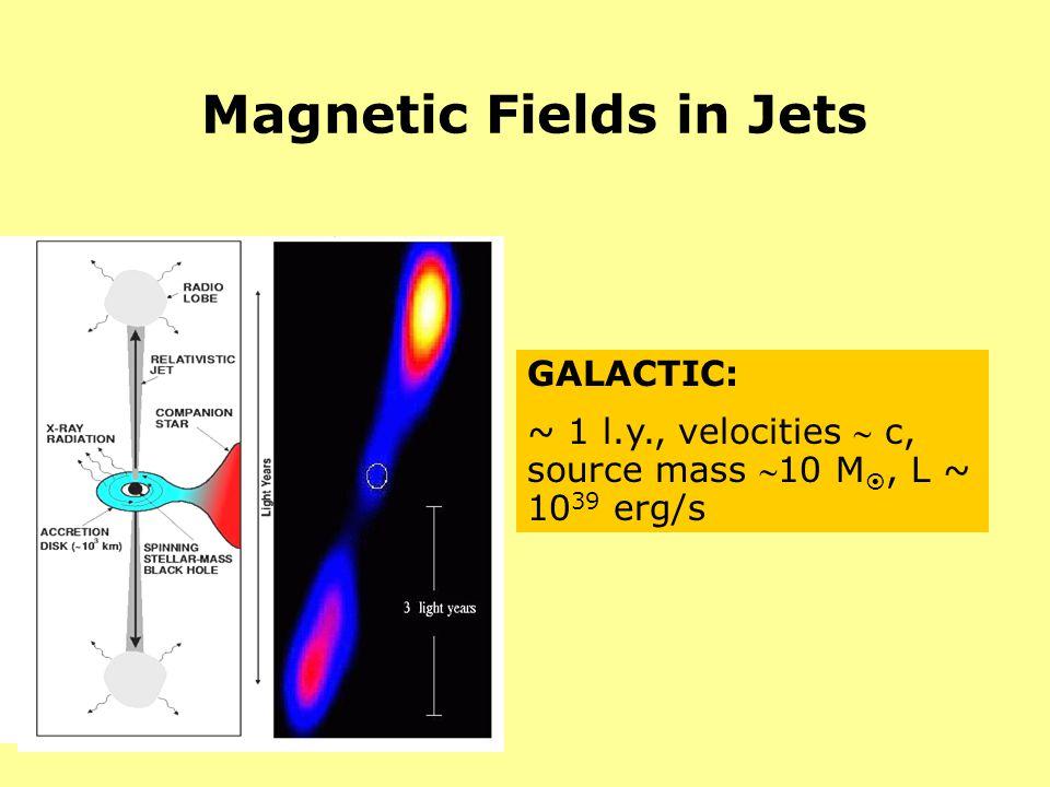 Magnetic Fields in Jets