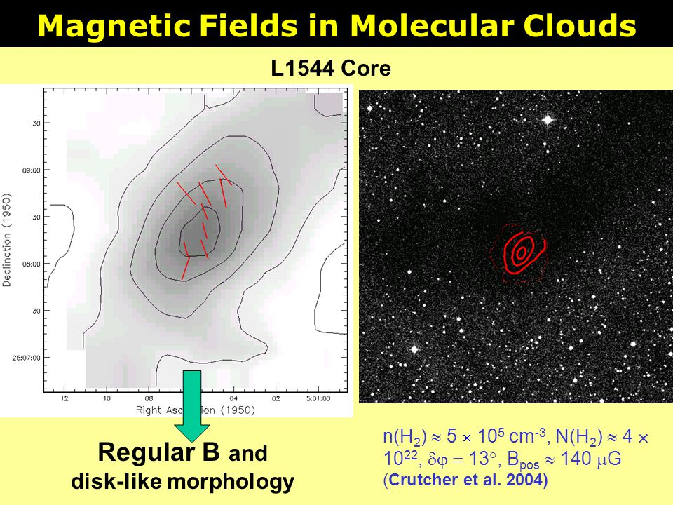Magnetic Fields in Molecular Clouds Regular B and disk-like morphology