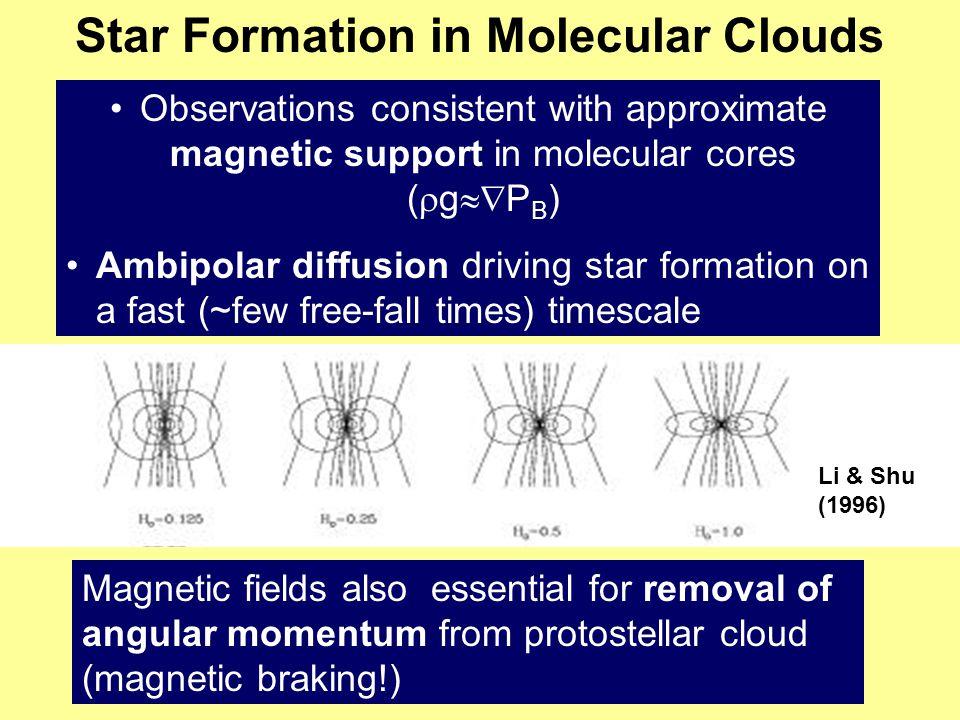 Star Formation in Molecular Clouds