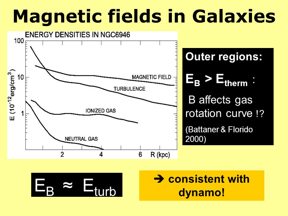 Magnetic fields in Galaxies