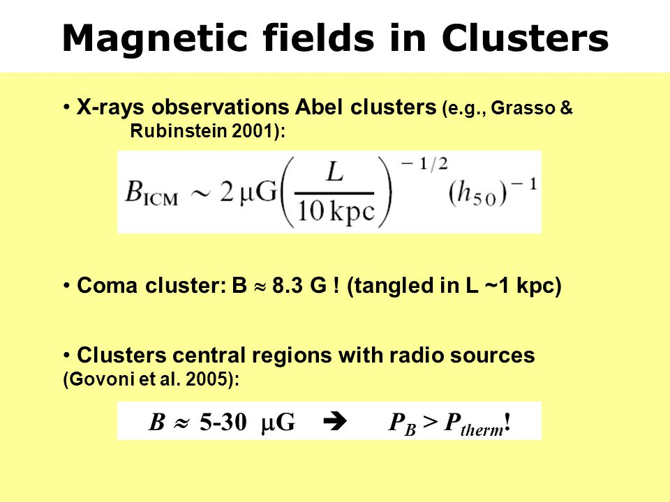 Magnetic fields in Clusters