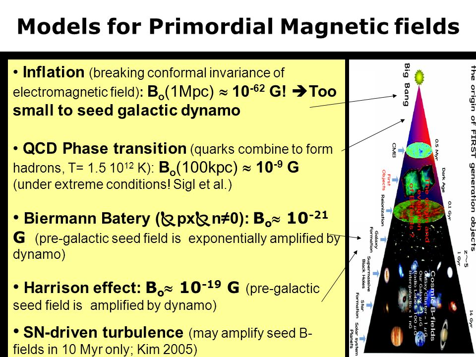 Models for Primordial Magnetic fields