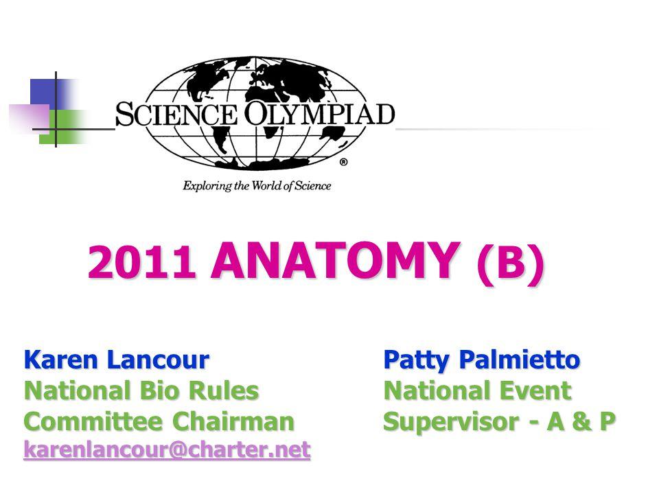 2011 ANATOMY (B) Karen Lancour Patty Palmietto
