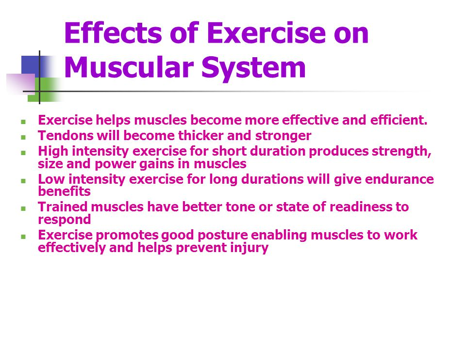 Effects of Exercise on Muscular System