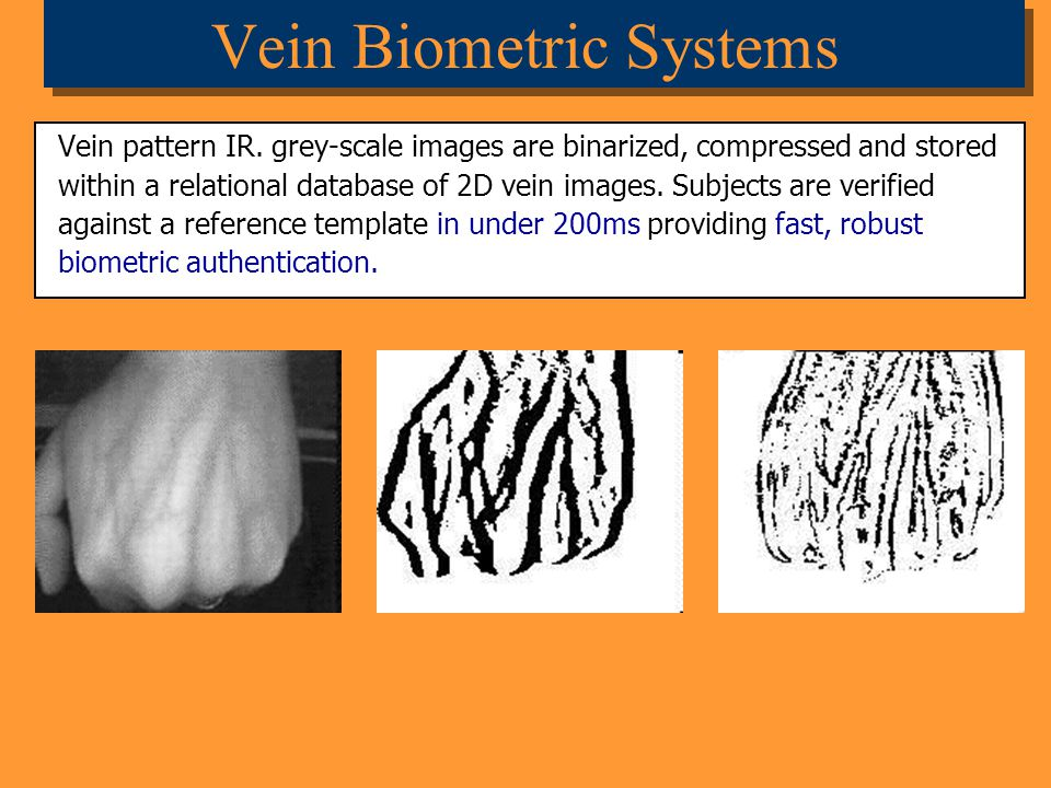 Vein Biometric Systems