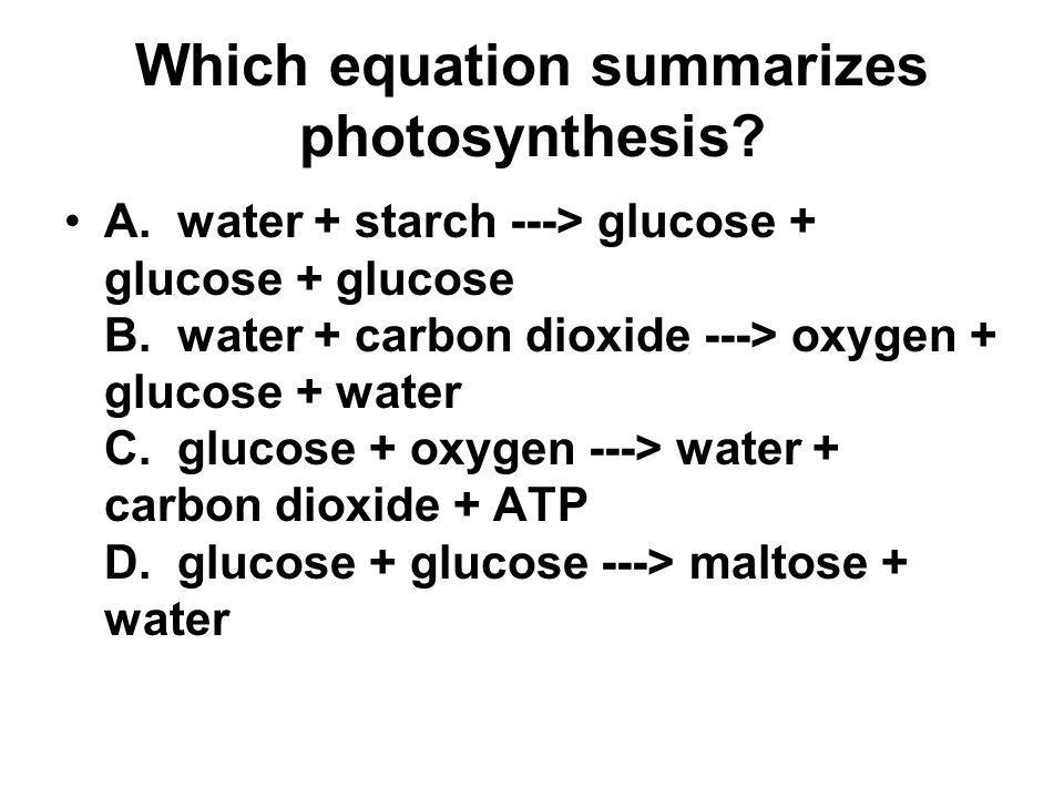 Which equation summarizes photosynthesis