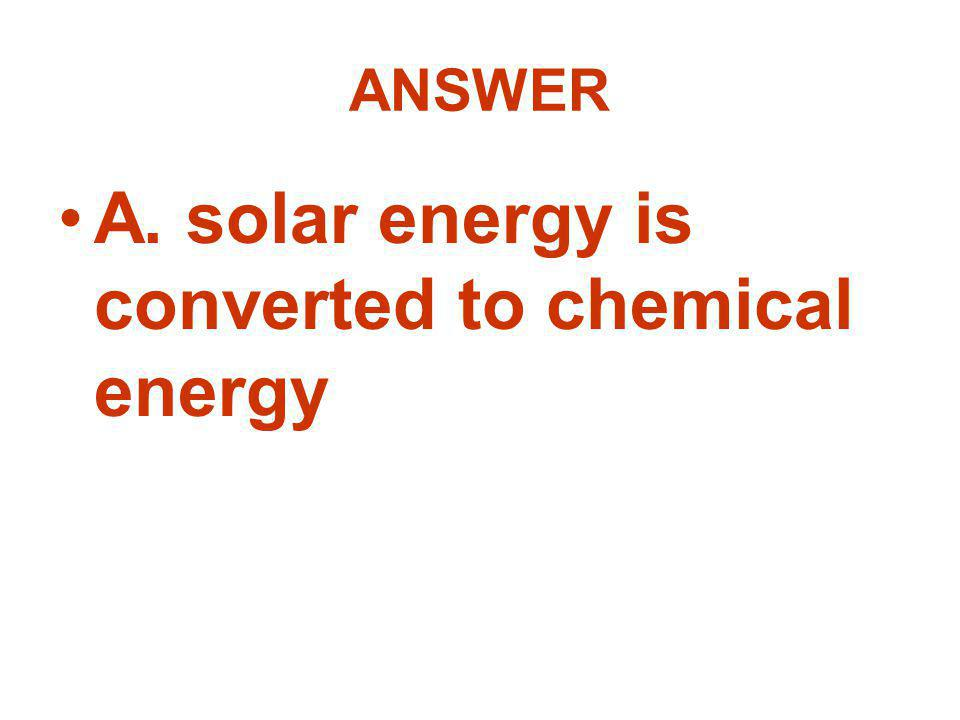 A. solar energy is converted to chemical energy