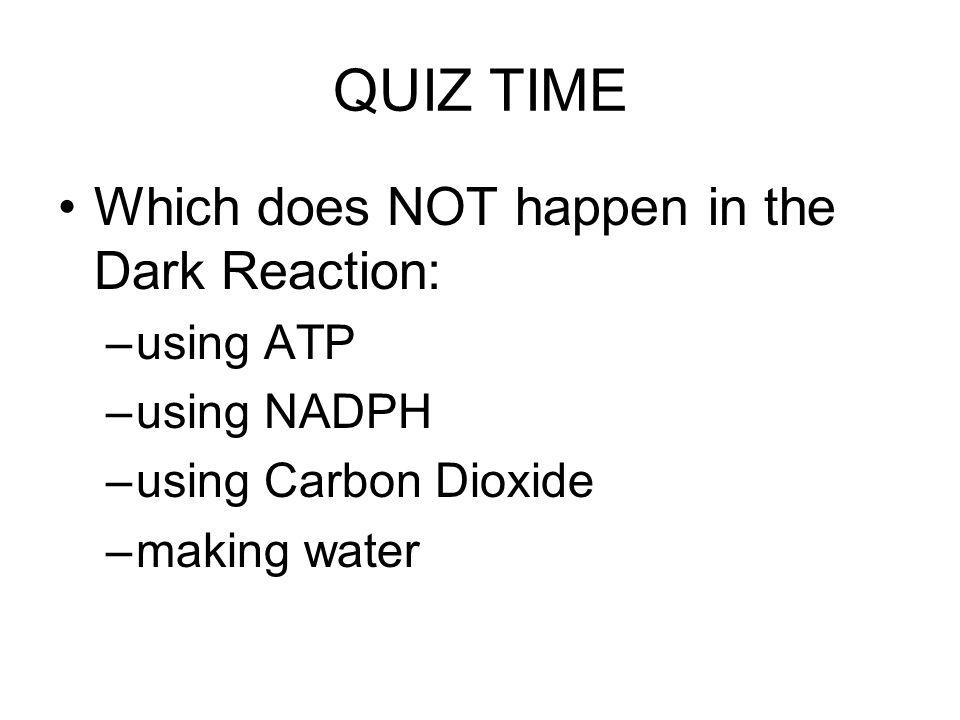 QUIZ TIME Which does NOT happen in the Dark Reaction: using ATP