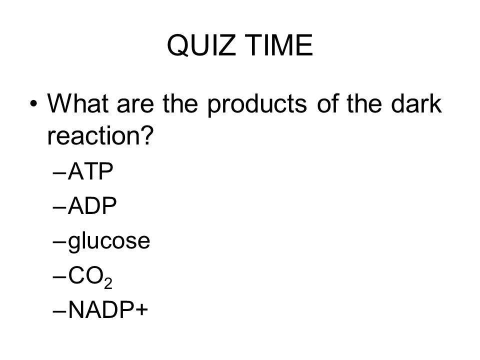 QUIZ TIME What are the products of the dark reaction ATP ADP glucose