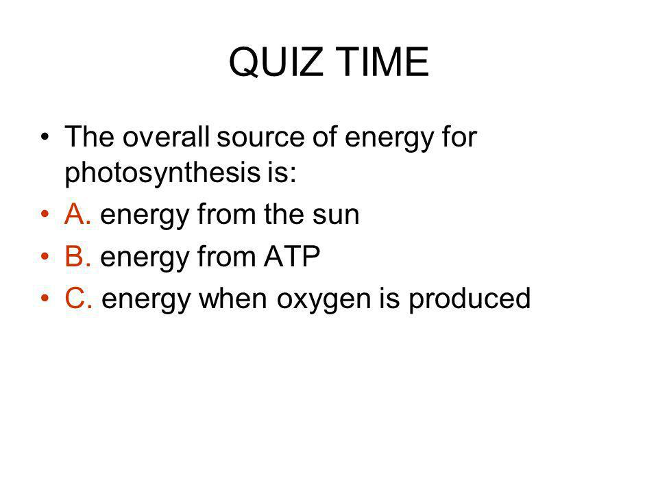 QUIZ TIME The overall source of energy for photosynthesis is: