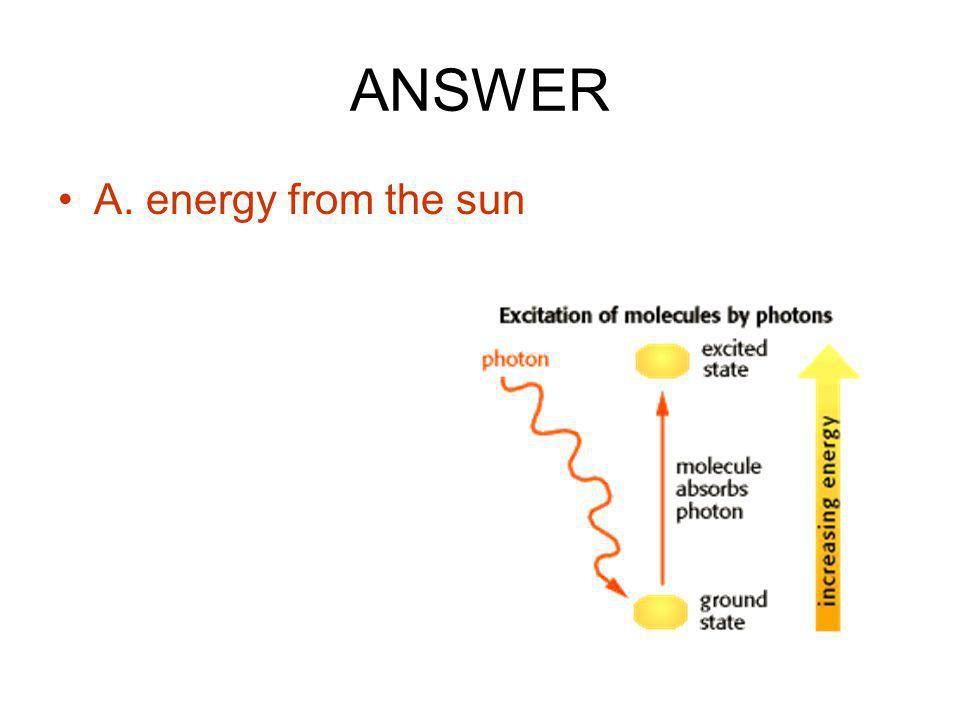 ANSWER A. energy from the sun