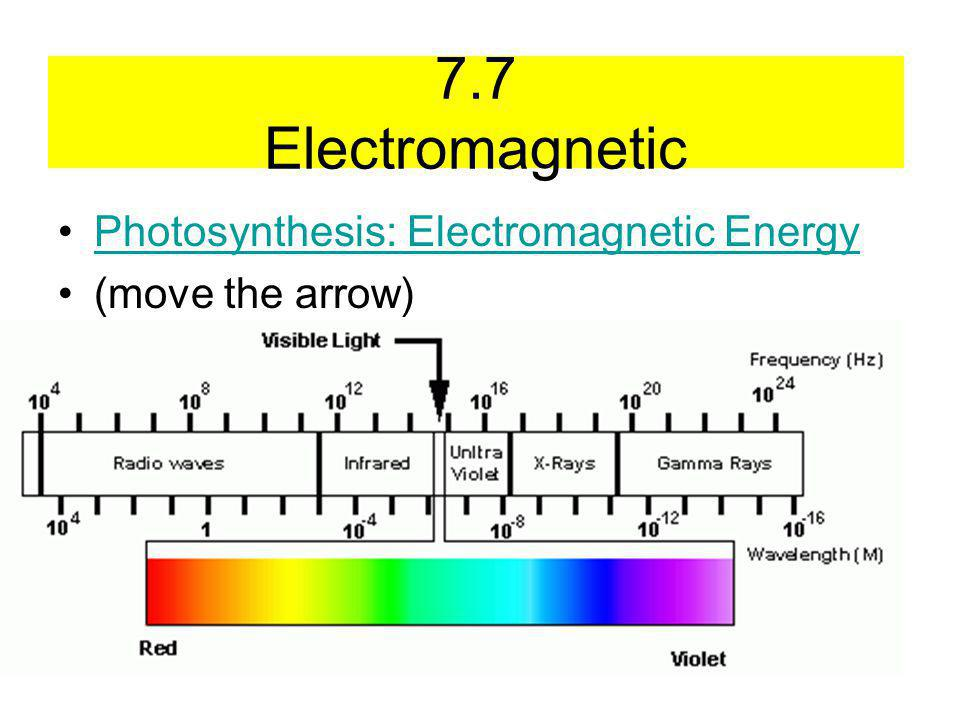 7.7 Electromagnetic Photosynthesis: Electromagnetic Energy