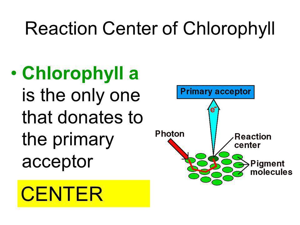 Reaction Center of Chlorophyll