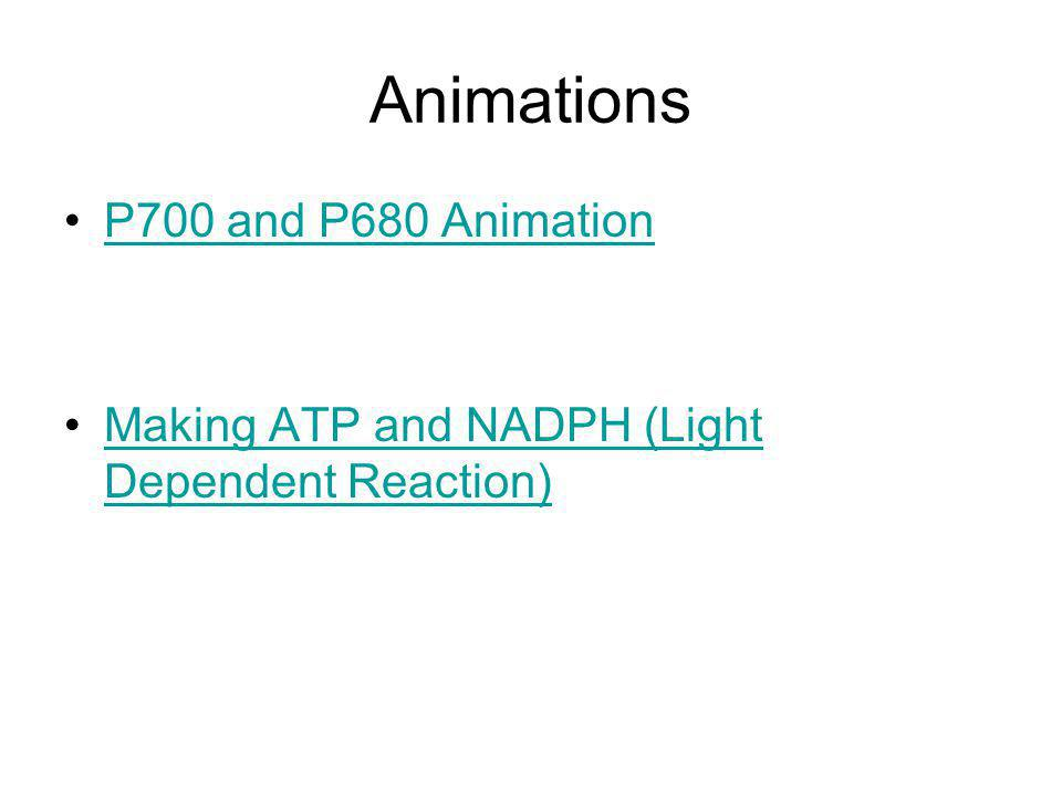 Animations P700 and P680 Animation