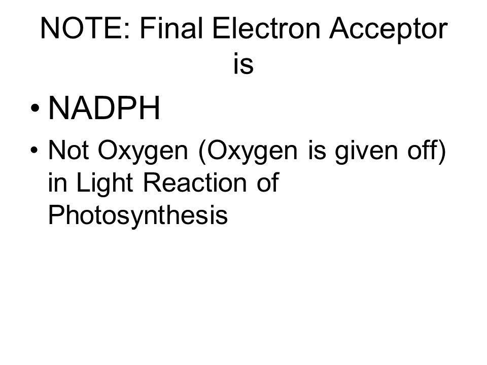 NOTE: Final Electron Acceptor is