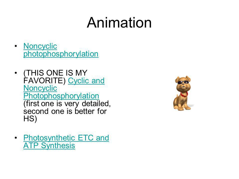 Animation Noncyclic photophosphorylation