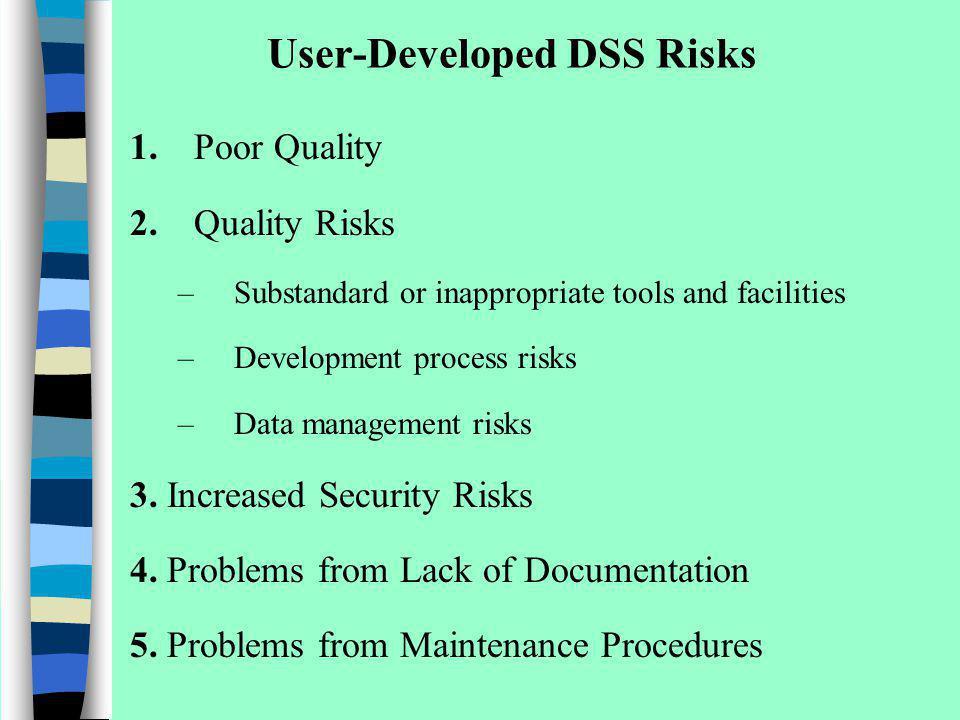 User-Developed DSS Risks