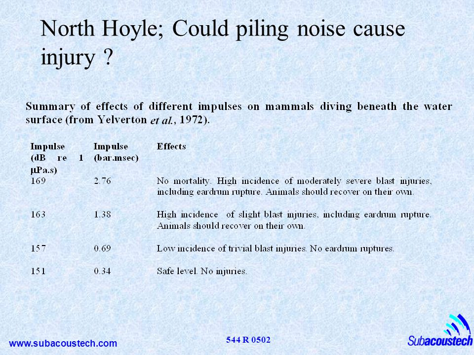 North Hoyle; Could piling noise cause injury
