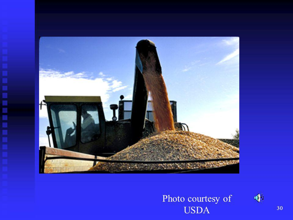 Say nothing Photo courtesy of USDA