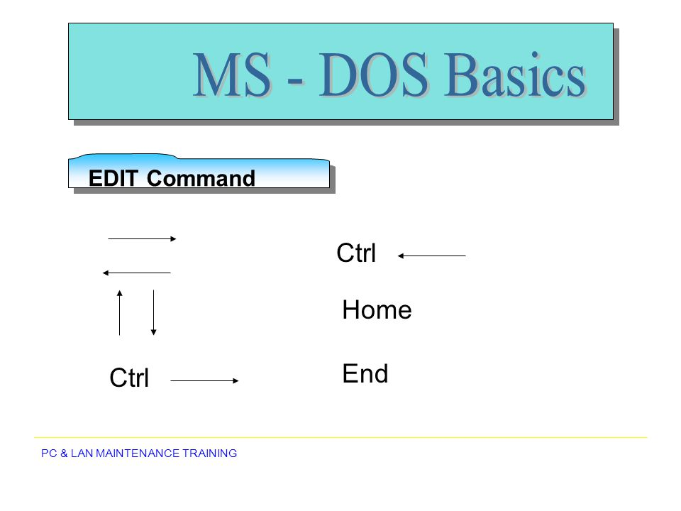 MS - DOS Basics EDIT Command Ctrl Home End Ctrl