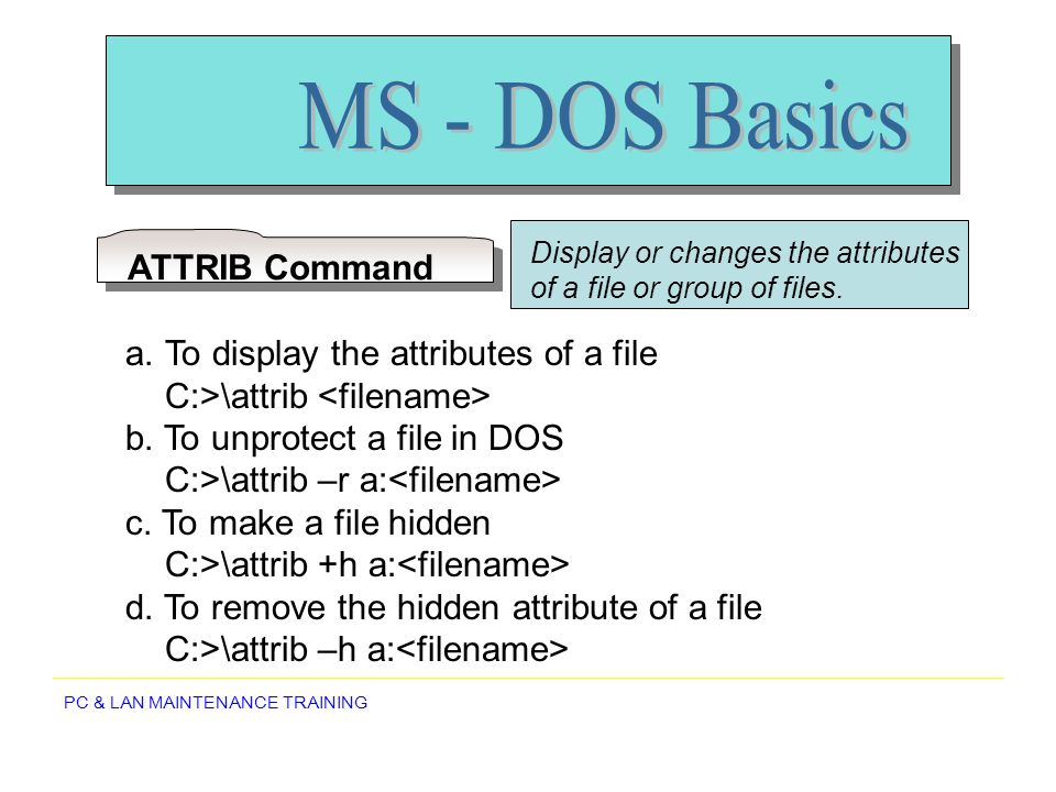 MS - DOS Basics ATTRIB Command To display the attributes of a file