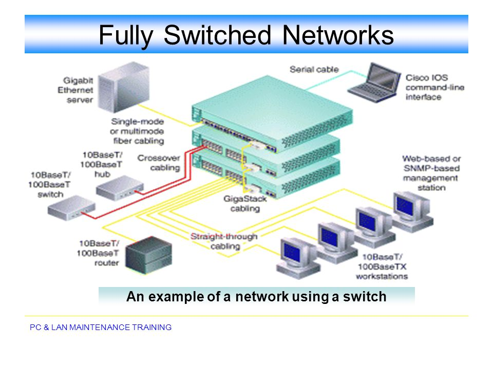 Fully Switched Networks