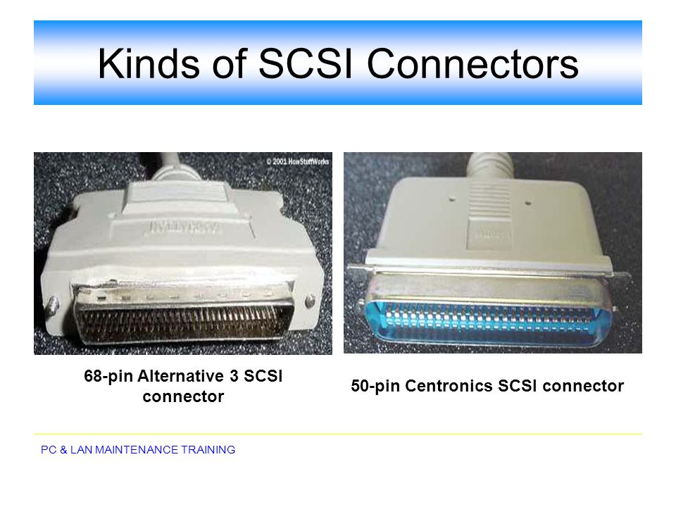Kinds of SCSI Connectors