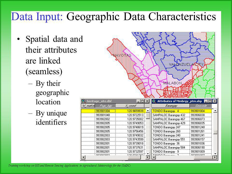 Data Input: Geographic Data Characteristics
