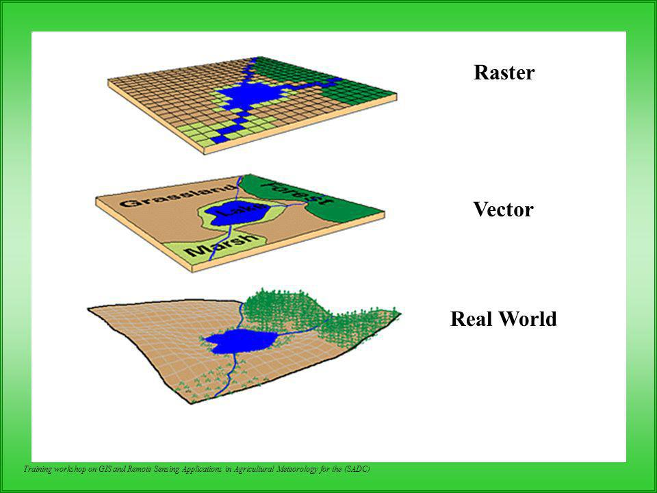 Raster Vector Real World
