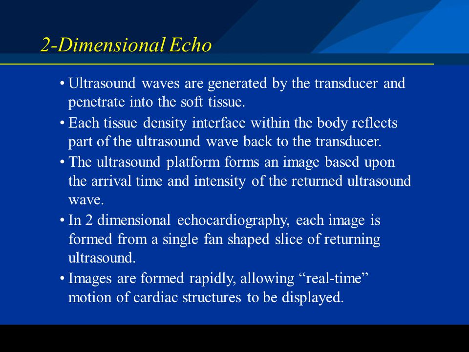 2-Dimensional Echo Ultrasound waves are generated by the transducer and penetrate into the soft tissue.