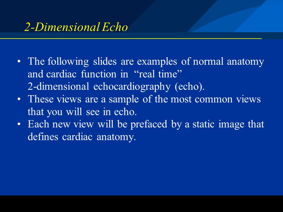 2-Dimensional Echo The following slides are examples of normal anatomy and cardiac function in real time