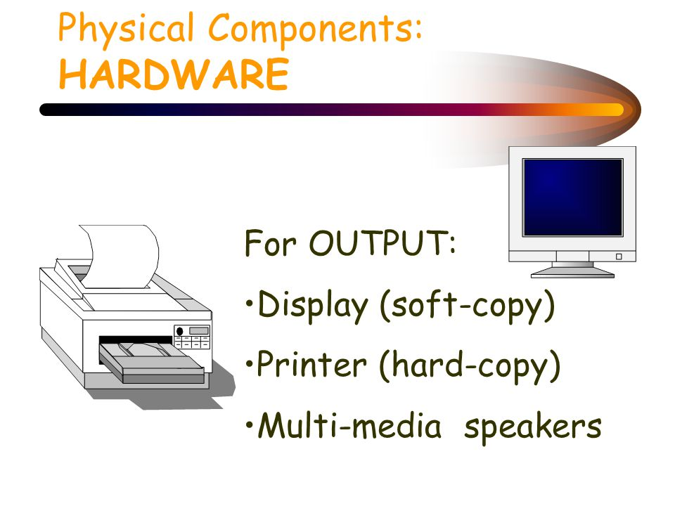 Physical Components: HARDWARE