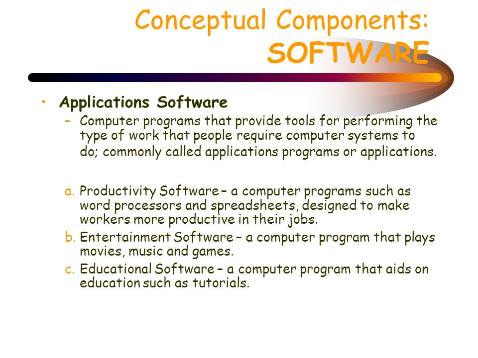 Conceptual Components: SOFTWARE