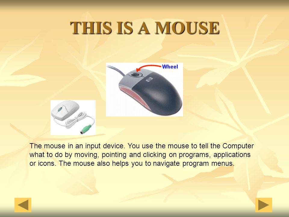 THIS IS A MOUSE The mouse in an input device. You use the mouse to tell the Computer.