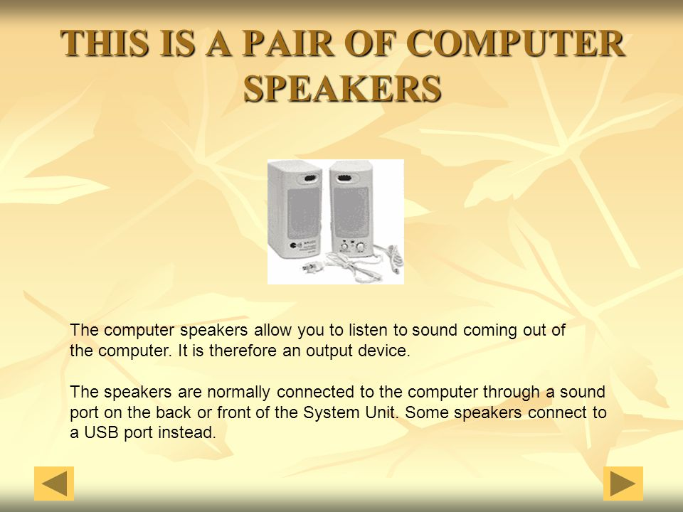THIS IS A PAIR OF COMPUTER SPEAKERS