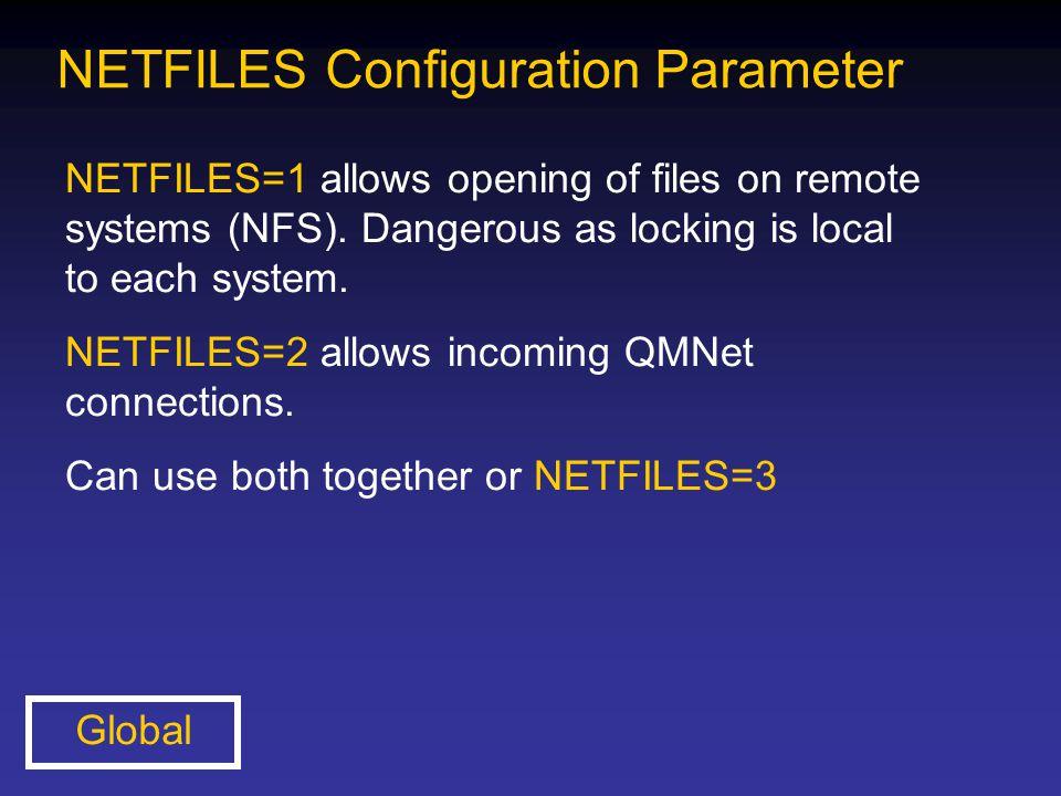 NETFILES Configuration Parameter